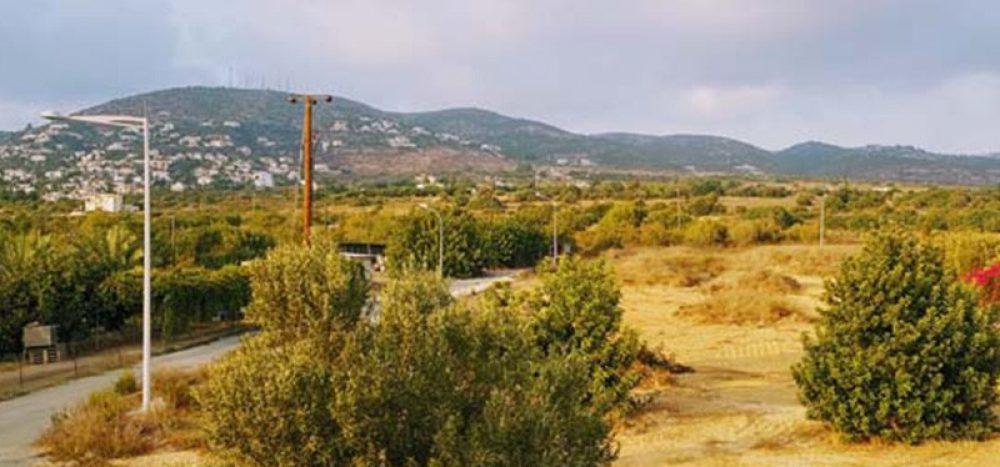 Tremithousa